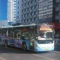 泰安K字号公交车军团